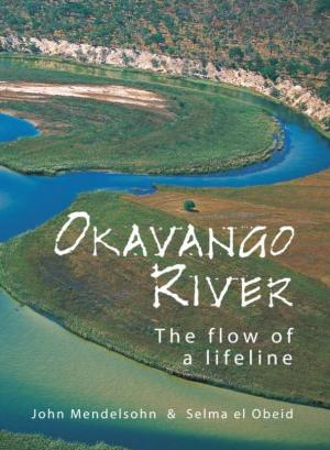 Okavango River: The flow of a lifeline